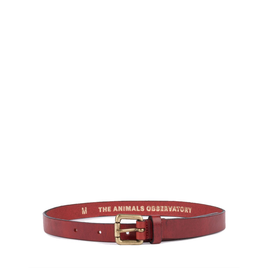The Animals Observatory - Brown leather belt