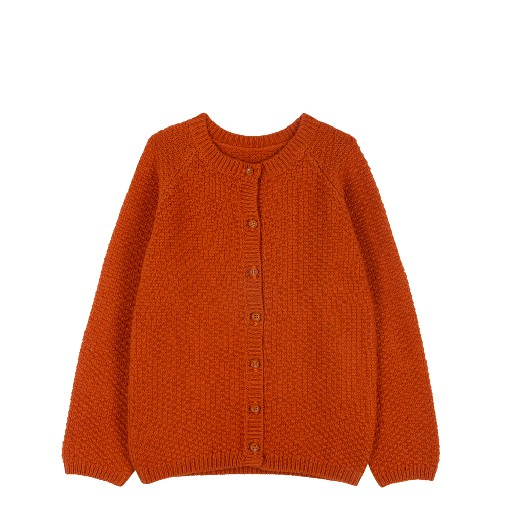 Kids shoe online Le Petit Germain cardigan Knitted cardigan rust