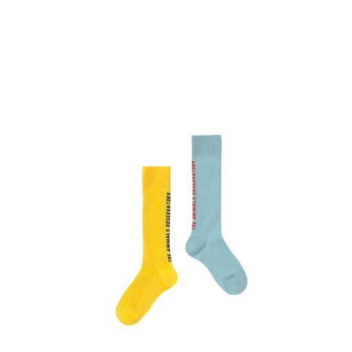 Kids shoe online The Animals Observatory short socks Blue/yellow kneesocks