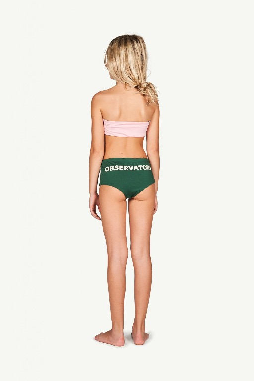 The Animals Observatory bikini Roze -groene colorblock bikini